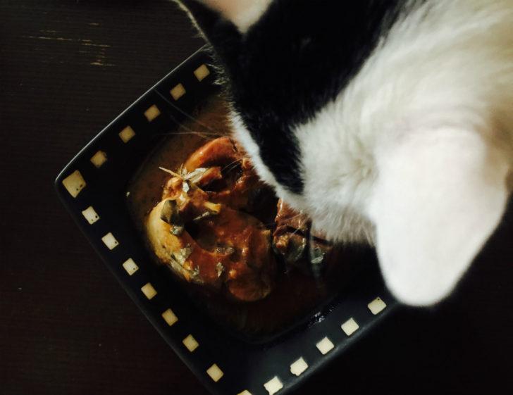 ネコとサバ缶